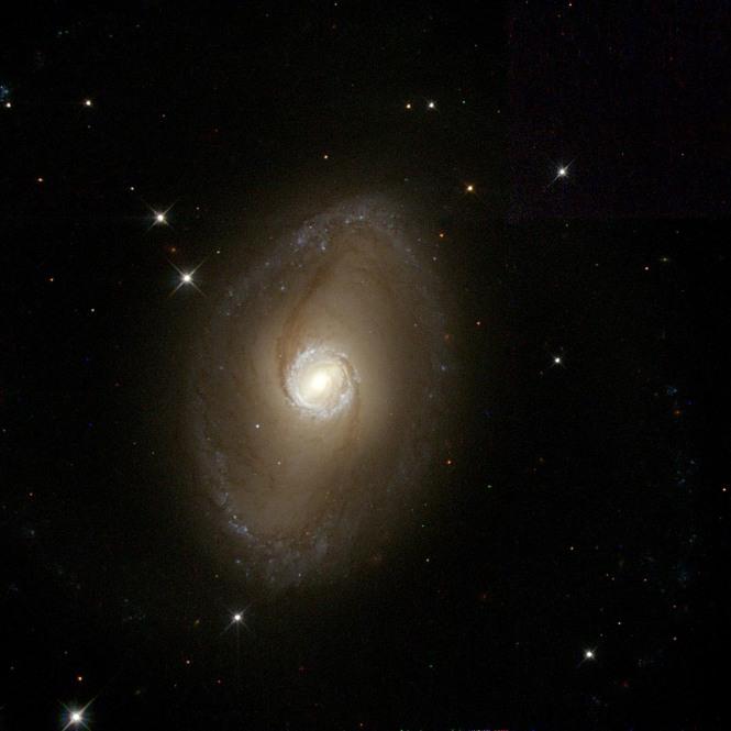 NGC6782